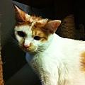 2012-09-14輸入照片 040