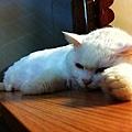 2012-09-14輸入照片 039