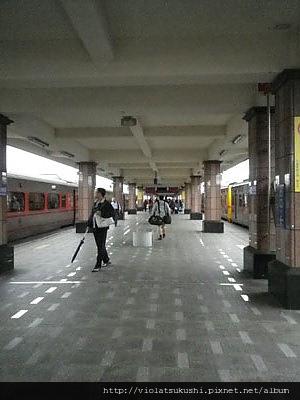 IMGP3330.jpg