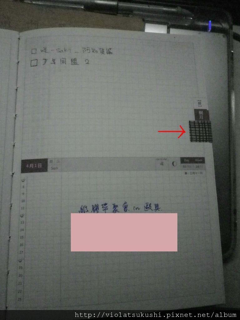 IMGP4600