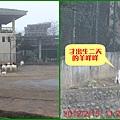 1010215_六福莊村動物園1