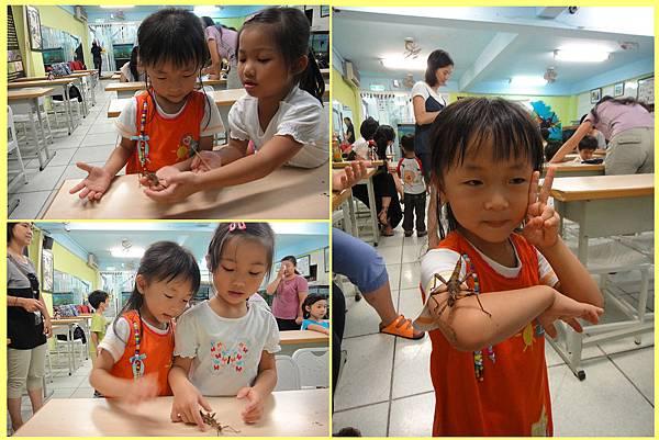1010810_昆蟲課姐姐教玩蟲