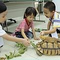 1010817_恐龍營餵烏龜