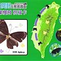 紫蝶祝福卡