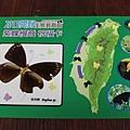 1020122_紫斑蝶祈福卡2