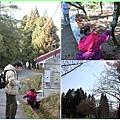 福壽山找自然物