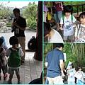 1020514_zoo小書2