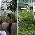 1020618_zoo昆蟲館