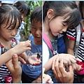 1020618_zoo昆蟲