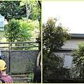 1020917_台大綠房子