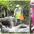 1030207_zoo冬令營研究餵豬