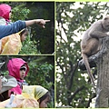 1030207_zoo冬令營彌猴