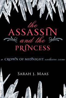 The Assassin and the Princess