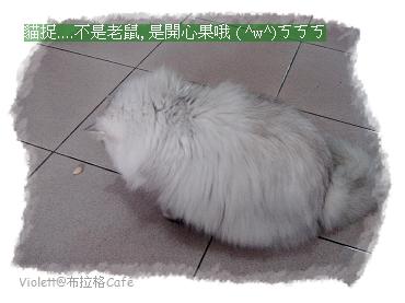 DSC02088po.jpg