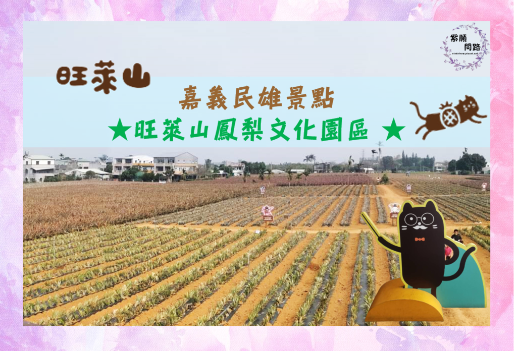 嘉義民雄 旺萊山鳳梨文化園區.png