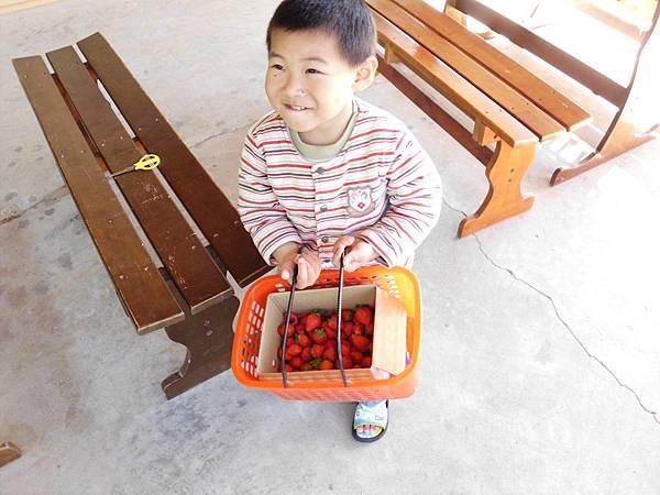 草莓09.jpg