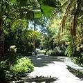 走在校內的花園真的讓人心情很放鬆呢.jpg