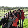 Taiwanese students at winery.jpg