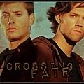 crossing_fate_cab4.jpg