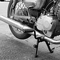 M1604-024-7737-MPF-135-Greensheep-Kodak-5219-500T-11.jpg