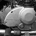 M1604-024-7737-MPF-135-Greensheep-Kodak-5219-500T-10.jpg