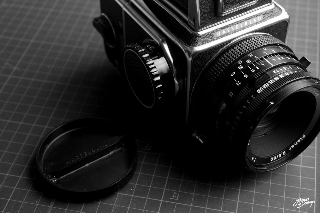 D1710-1016-CF-135-Greensheep-Canon_EOS_5D3-40_70-Hass-02.jpg-BLOG-W.jpg