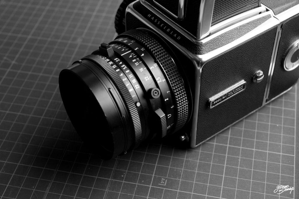 D1710-1016-CF-135-Greensheep-Canon_EOS_5D3-40_70-Hass-01.jpg-BLOG-W.jpg