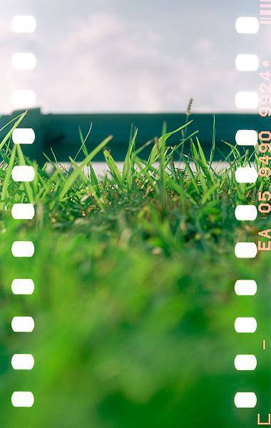 20181114-CR-PER-05-Kodak-100D-11.jpg
