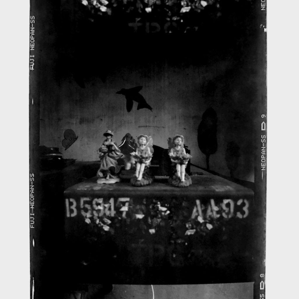 2019-05-05-Fujifilm-NeopanSS-001.jpg