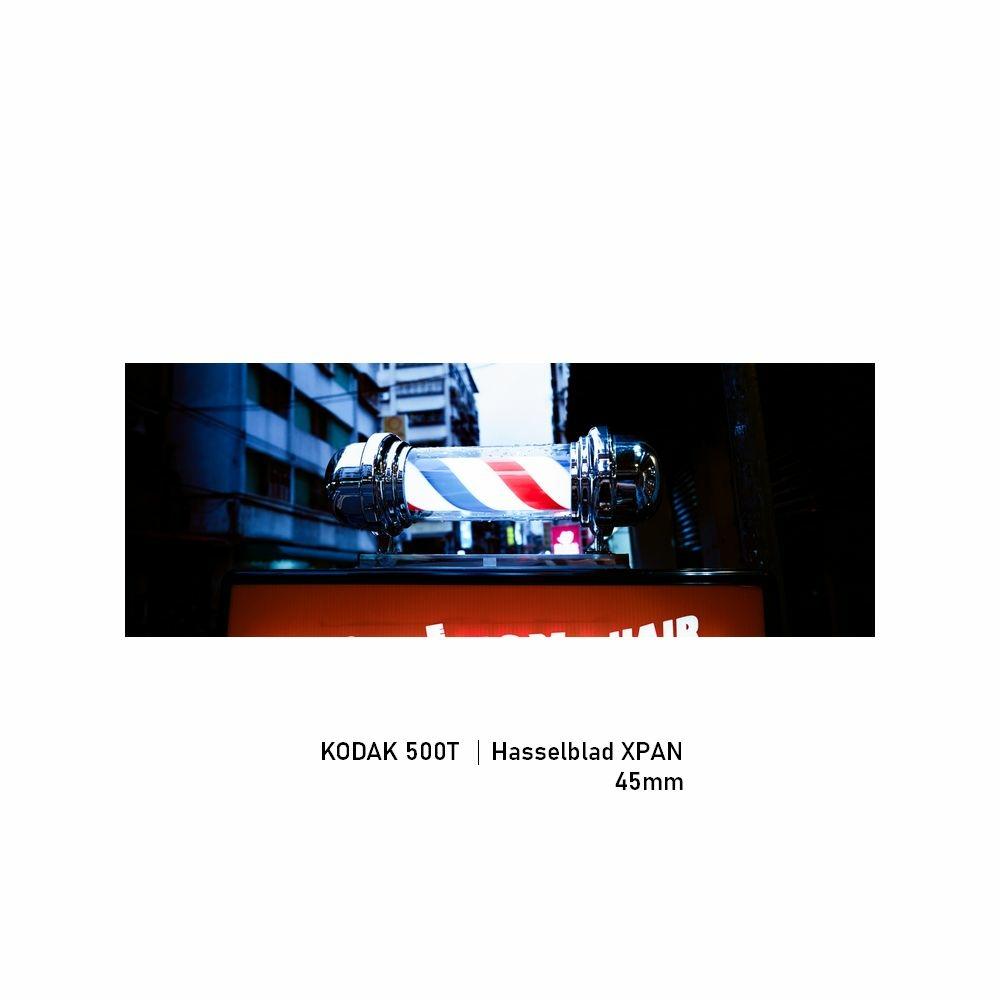 Kodak 500T|Hasselblad XPAN|45mm|greensheep|00.jpg