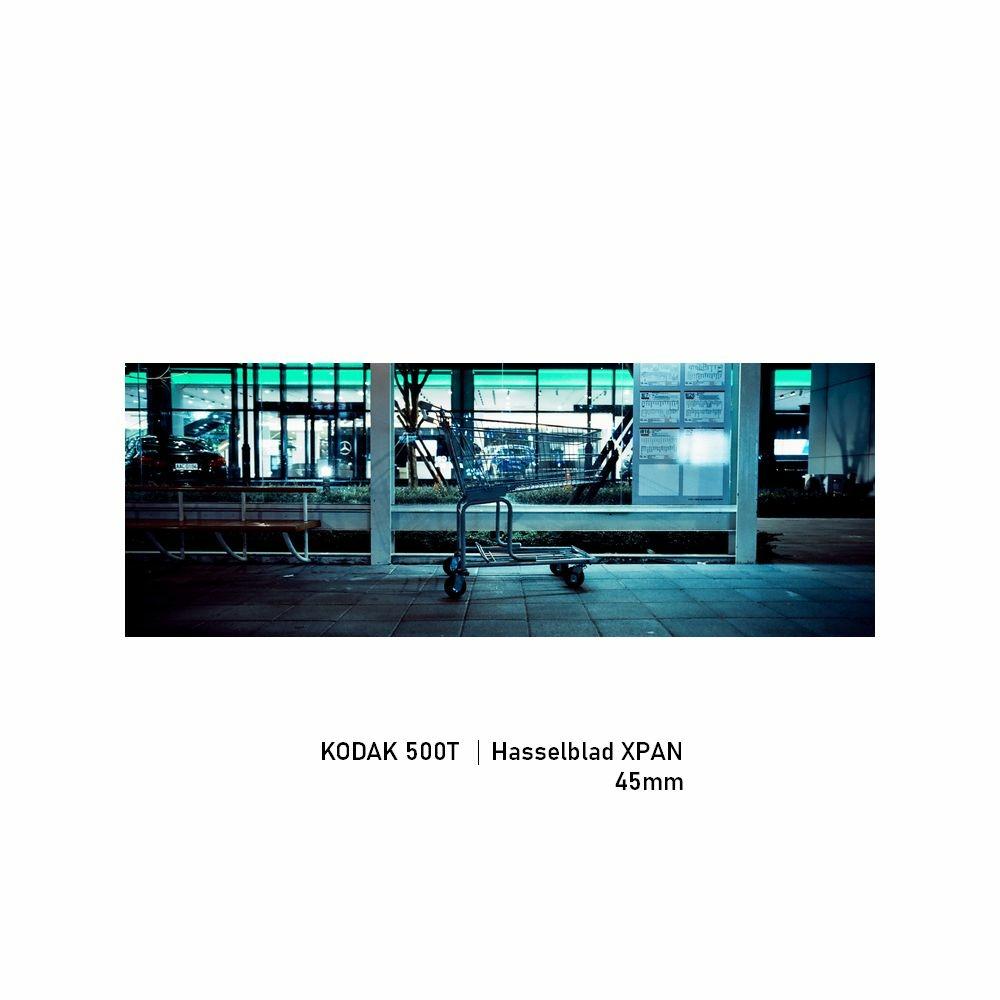 Kodak 500T|Hasselblad XPAN|45mm|greensheep|03.jpg