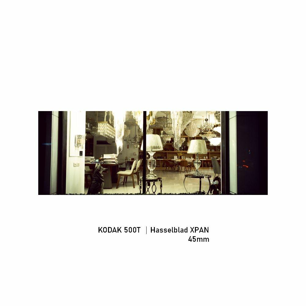 Kodak 500T|Hasselblad XPAN|45mm|greensheep|04.jpg