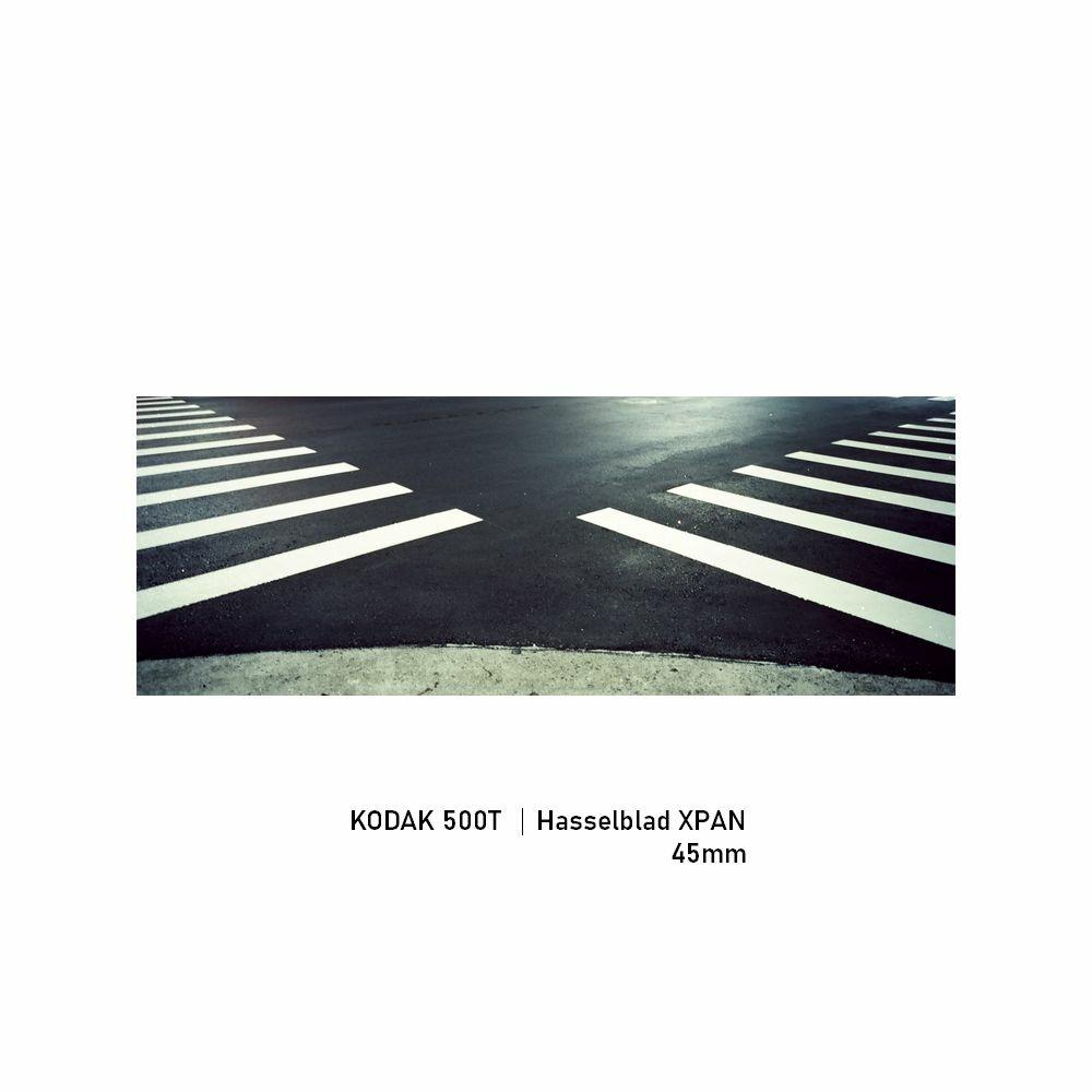 Kodak 500T|Hasselblad XPAN|45mm|greensheep|05.jpg