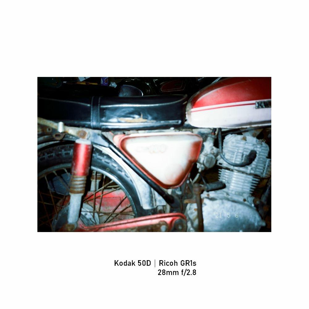 Kodak-greensheep|FRAME|27.jpg