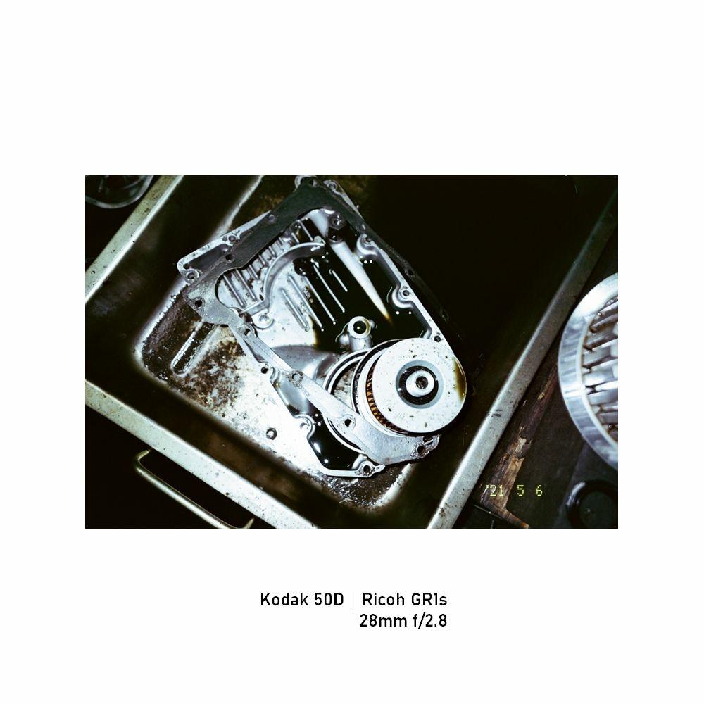 Kodak-greensheep|FRAME|18.jpg