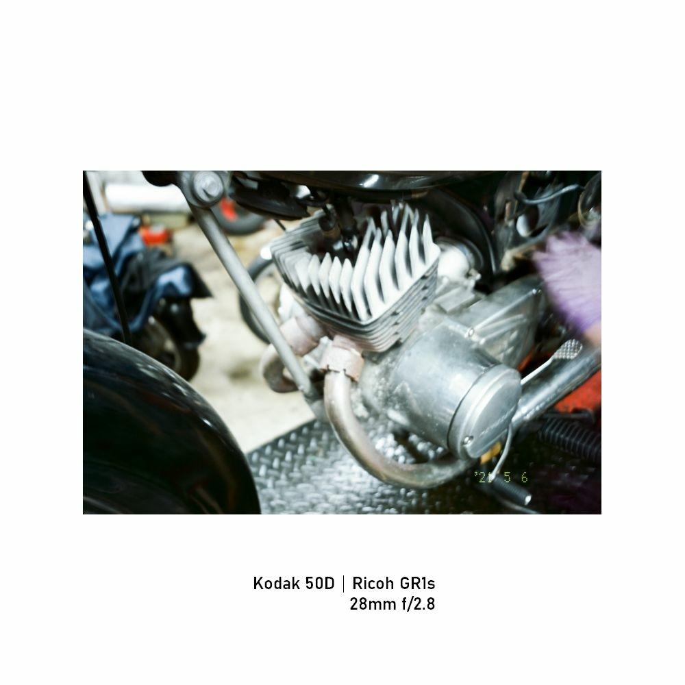 Kodak-greensheep|FRAME|14.jpg
