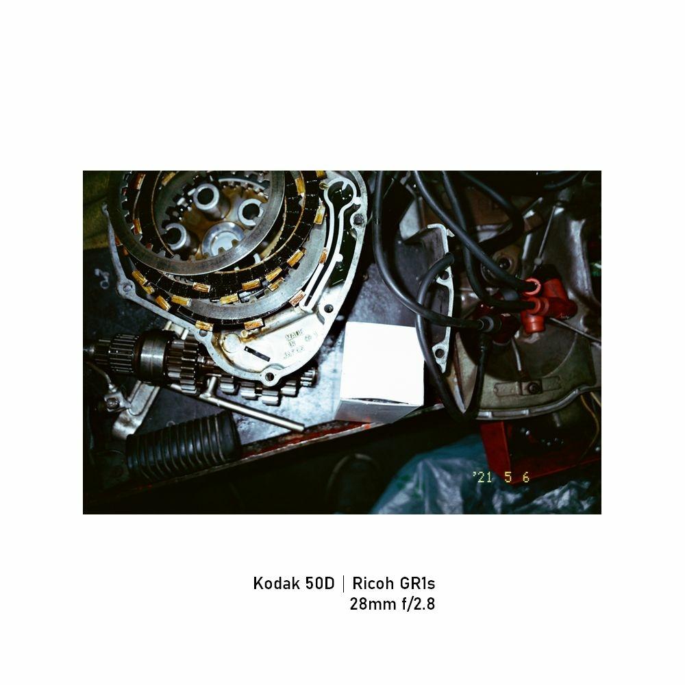Kodak-greensheep|FRAME|17.jpg