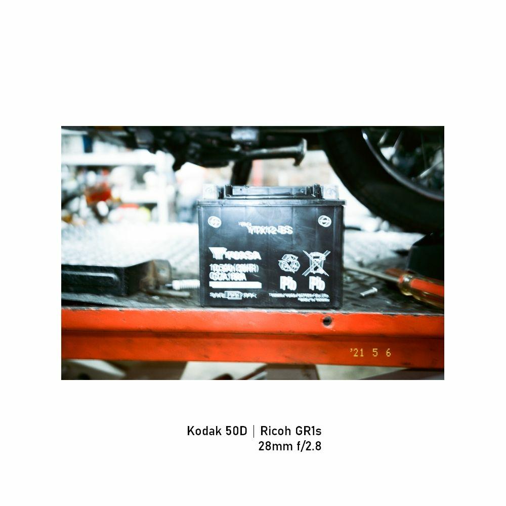 Kodak-greensheep|FRAME|13.jpg