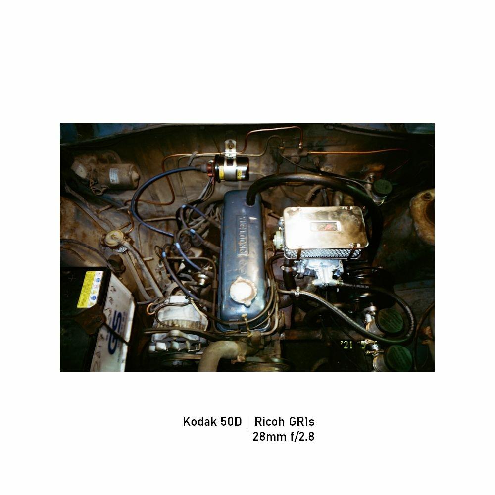 Kodak-greensheep|FRAME|09.jpg