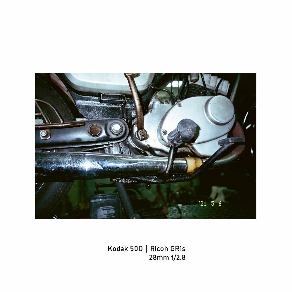 Kodak-greensheep|FRAME|19.jpg