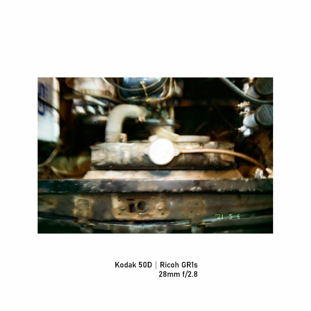 Kodak-greensheep|FRAME|08.jpg