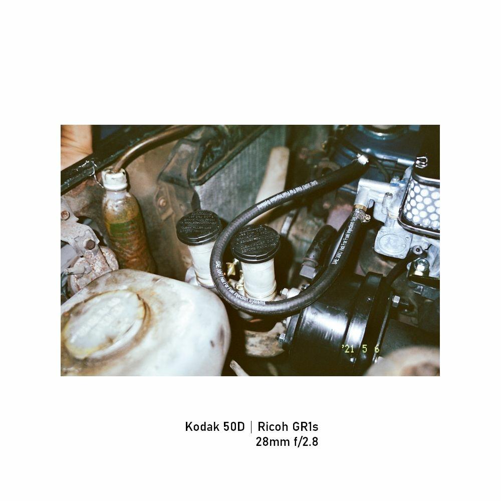 Kodak-greensheep|FRAME|31.jpg