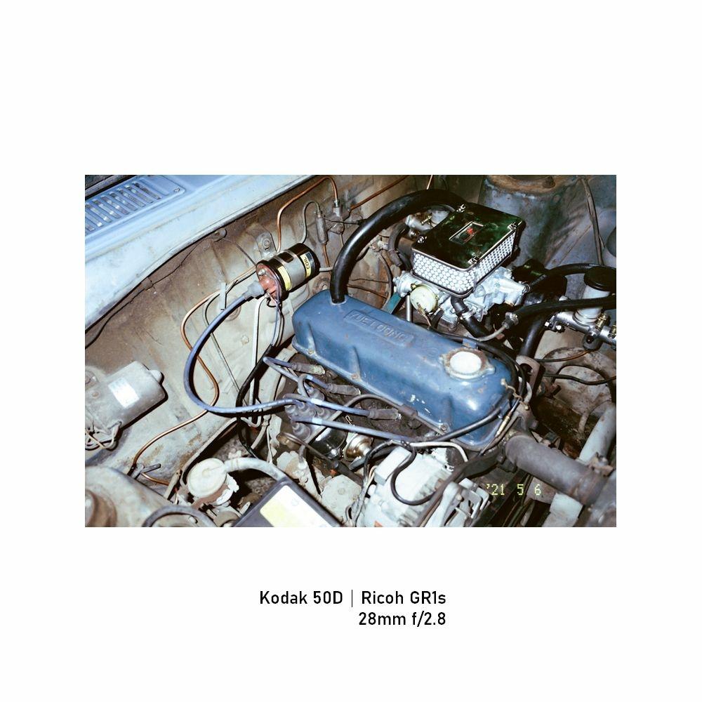 Kodak-greensheep|FRAME|29.jpg
