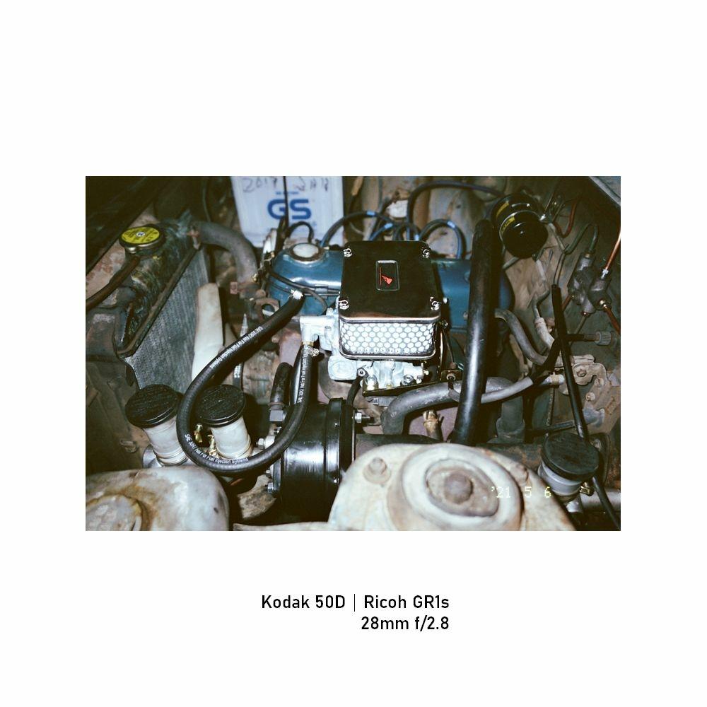 Kodak-greensheep|FRAME|30.jpg