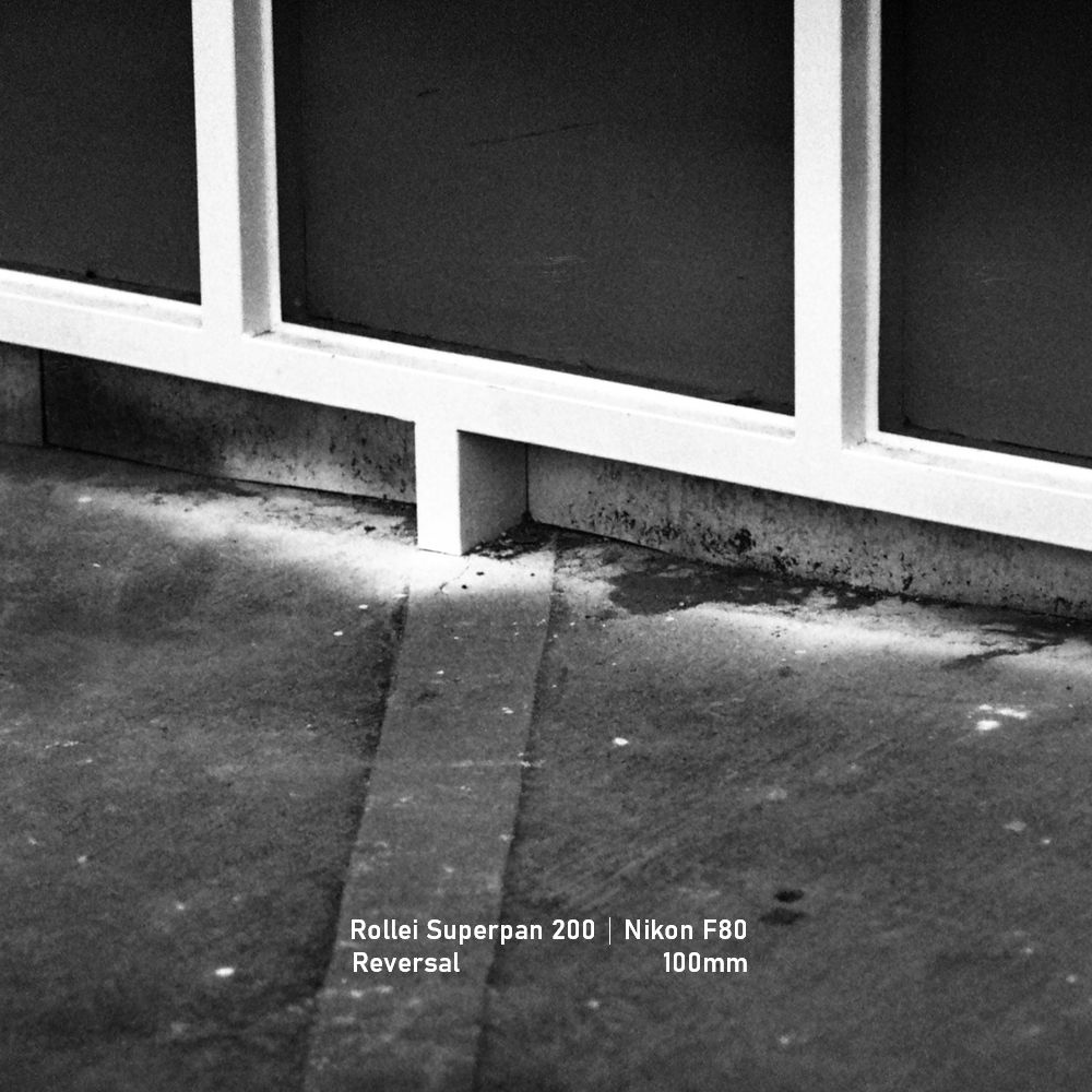 Rollei Superpan 200|Nikon F80|greensheep|SQ|33.jpg