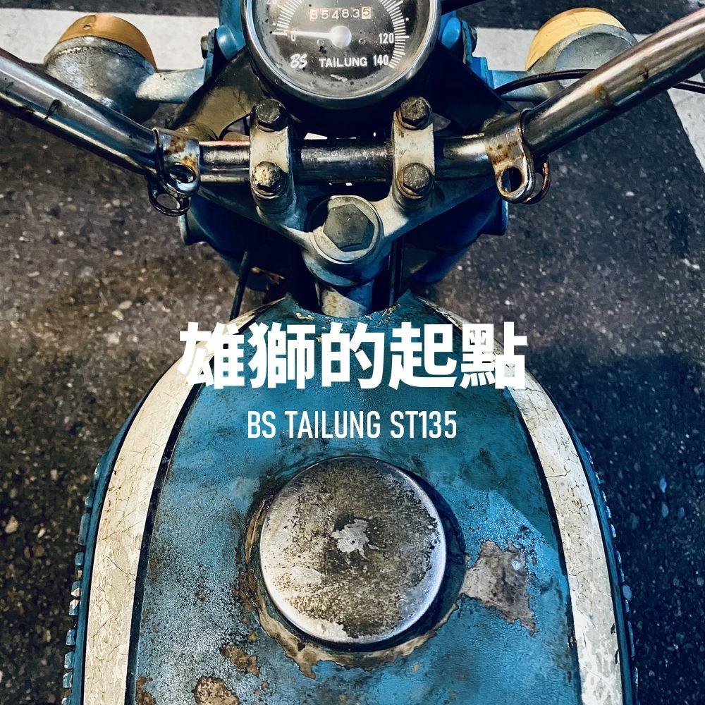 2021-05-28-BSTAILUNG-ST135-greensheep-01.jpg