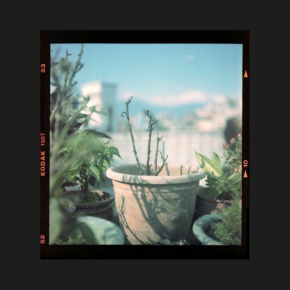 2021-06-01 中片幅 Kodak 100T 邊框.jpg