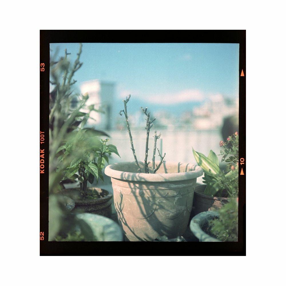 2021-06-01 中片幅 Kodak 100T 邊框 白色.jpg