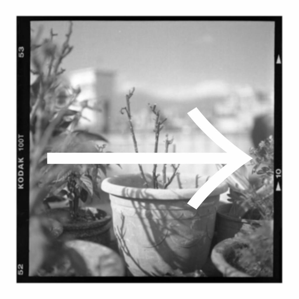 2021-06-01 中片幅 Kodak 100T 邊框 均衡 Notosans CJK TC Light.jpg