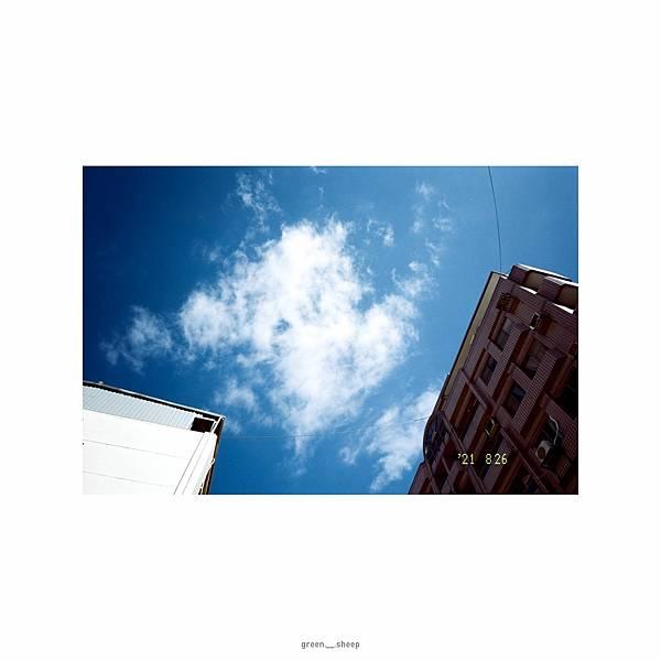 20210827-9577-Kodak50D-GR1Syymmdd|greensheep|009.jpg